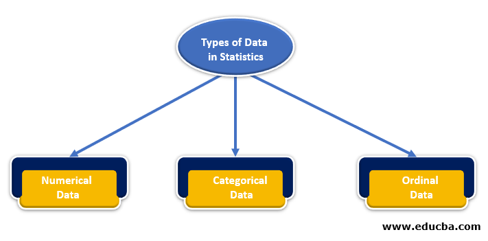 Different Types of Data in Statistics