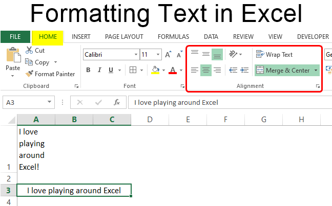 Formatting Text in Excel