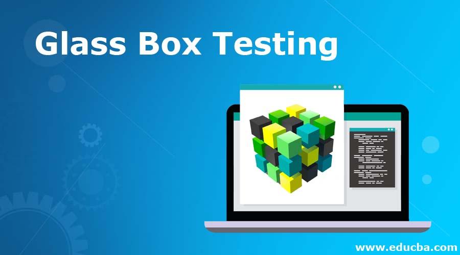 Glass Box Testing