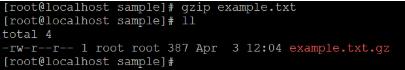 Linux gzip Example 1