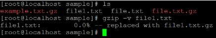 Linux gzip Example 3