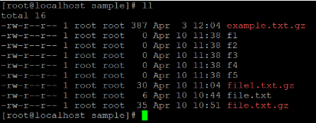 Linux gzip Example 4 a
