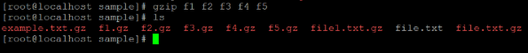 Linux gzip Example 4 b