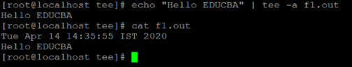 echo Example 3