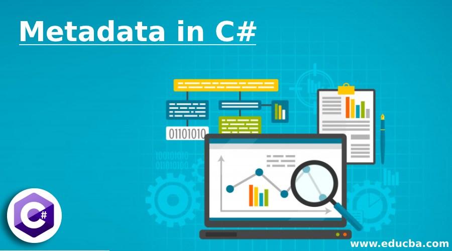 Metadata in C#