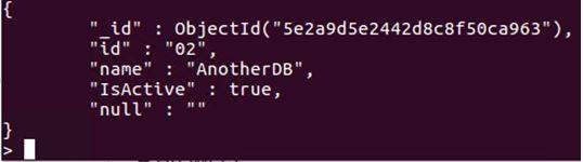 MongoDB Data Types4