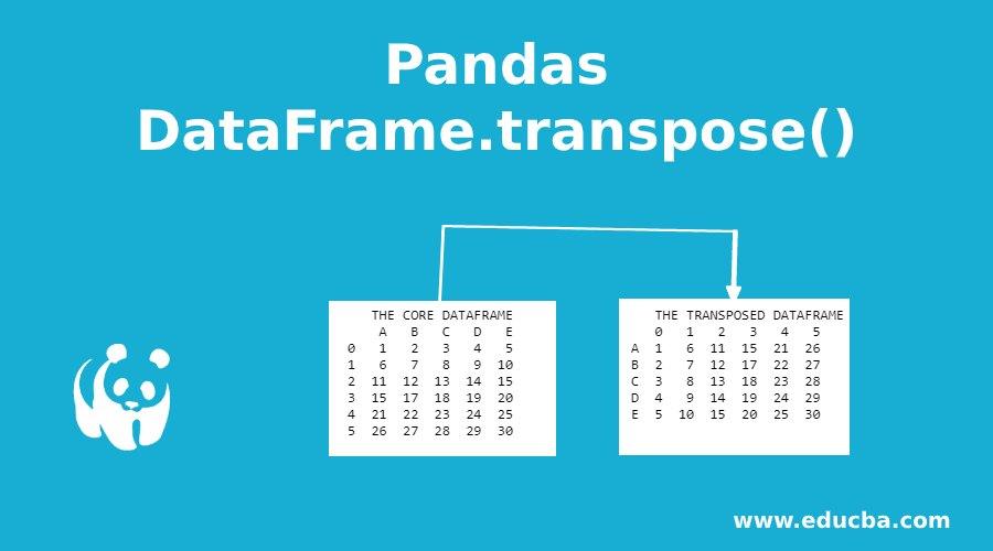 Pandas DataFrame.transpose()