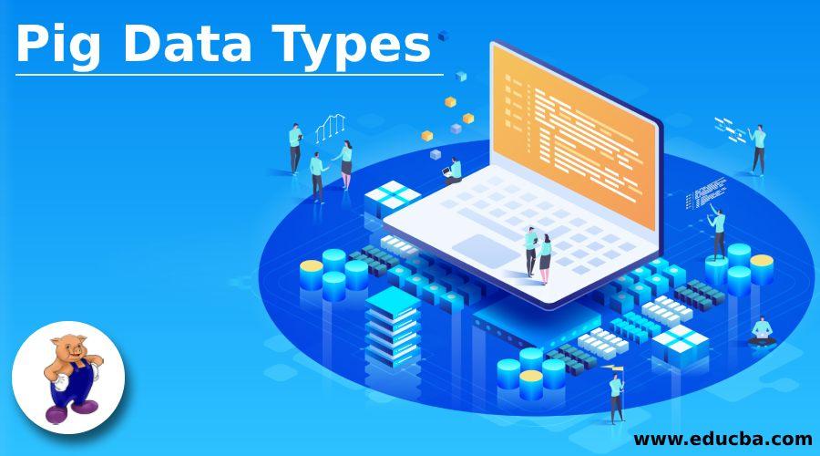 Pig Data Types