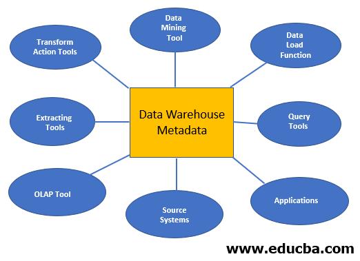 Roles of the Metadata