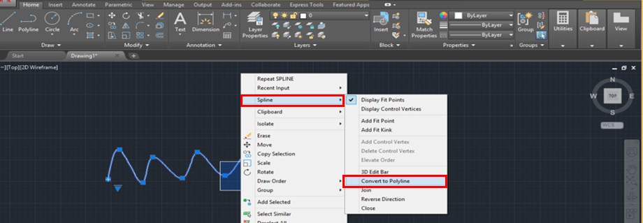 Spline in AutoCAD - 19