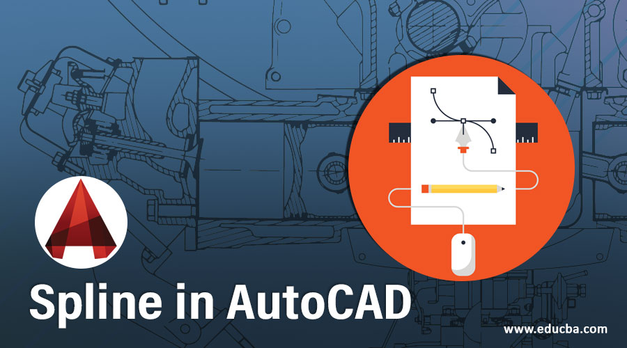 Spline in AutoCAD