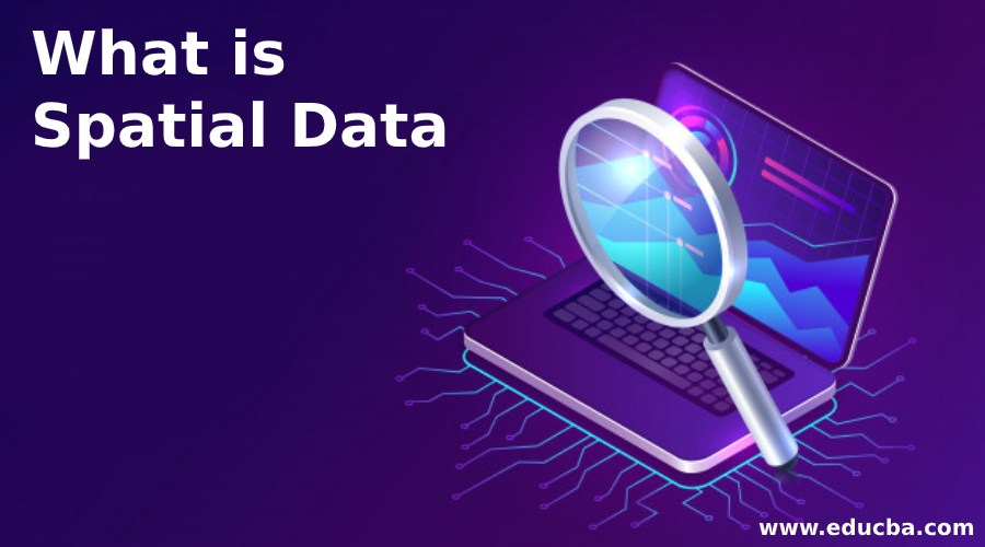 What is Spatial Data