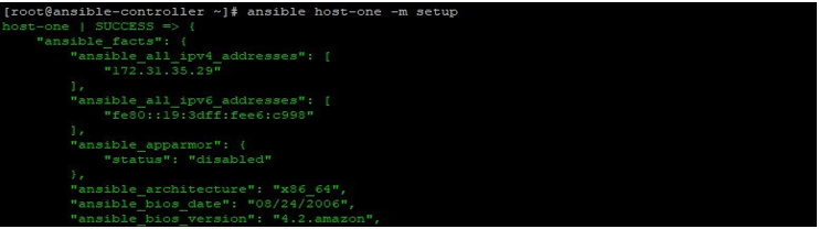 Ansible Facts output 1