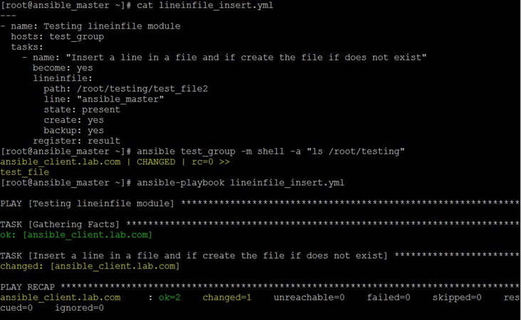 Ansible Lineinfile Example 2