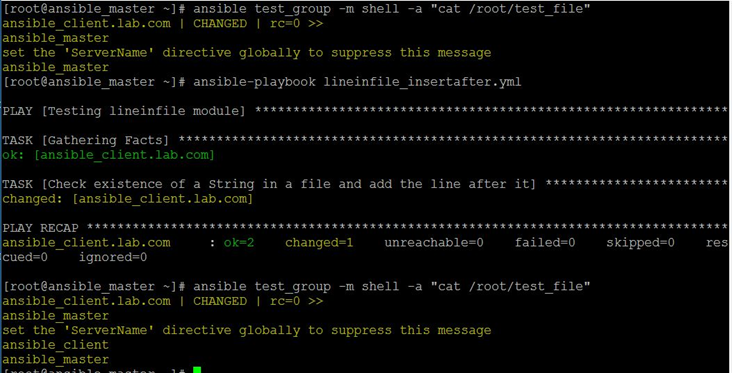 Ansible Lineinfile Example 4