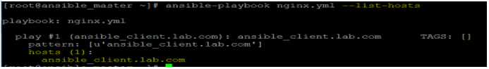 Ansible Playbooks output 2