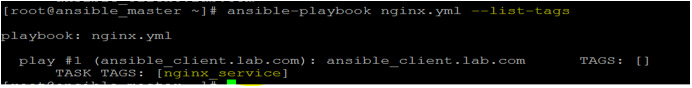 Ansible Playbooks output 3