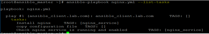 Ansible Playbooks output 4