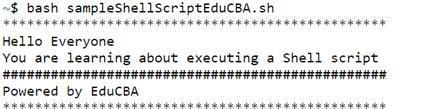 Execute Shell Script - 5