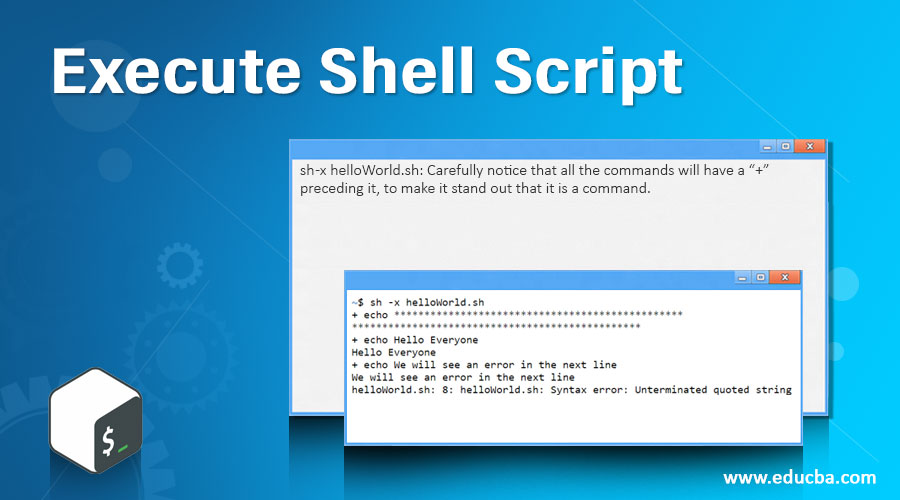 Execute Shell Script