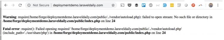 Laravel Deploy output 2