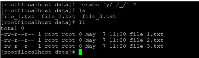 Linux Rename Command 13JPG