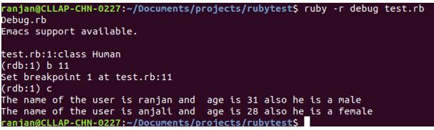 Ruby Debugger output 3