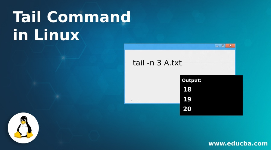 Tail Command in Linux