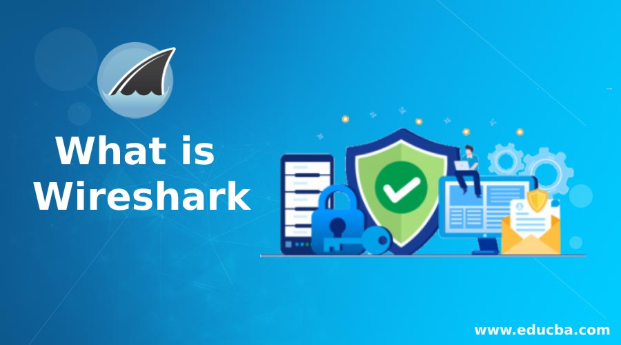 What is Wireshark