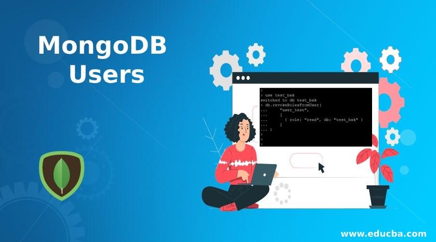 MongoDB Users