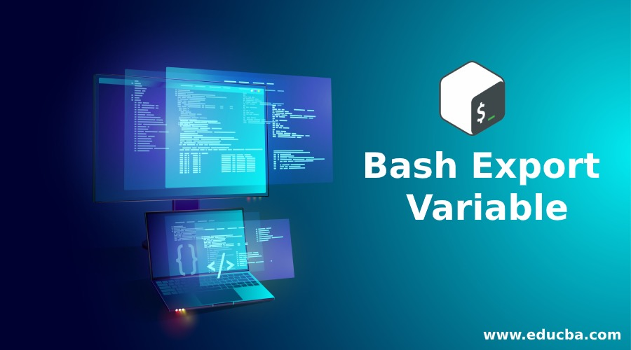 Bash Export Variable