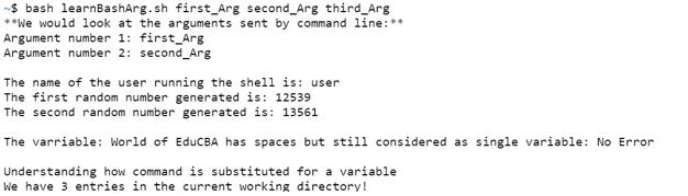 Bash Script Variables - 1