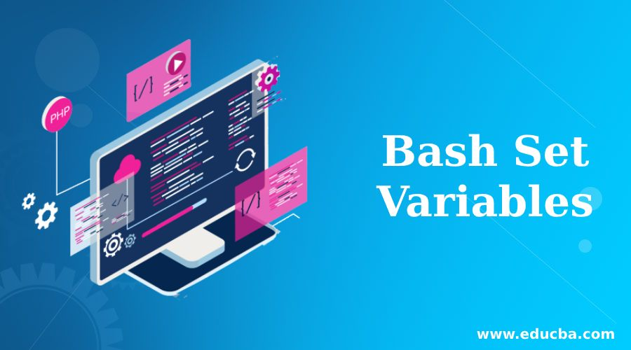 Bash Set Variables