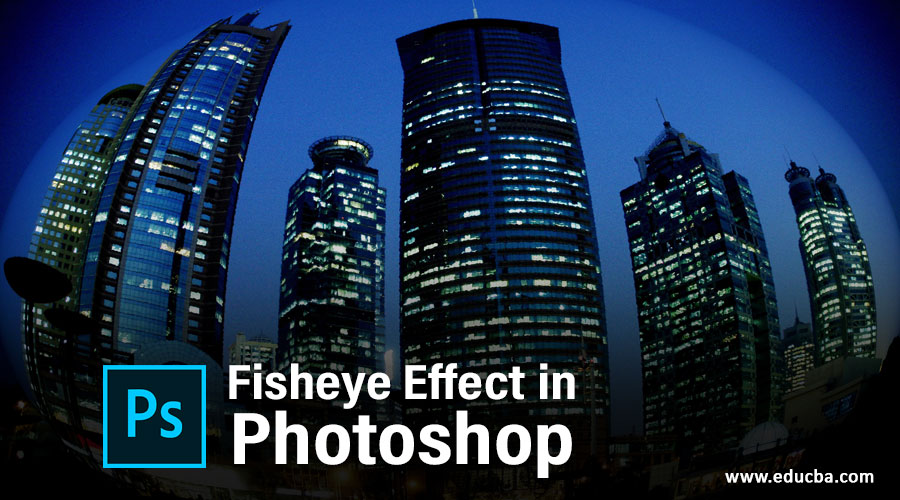 Fisheye Effect in Photoshop
