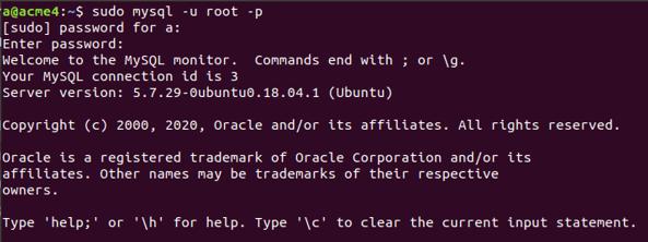 MySQL Root 1