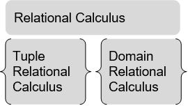Relational Calculus in DBMS1
