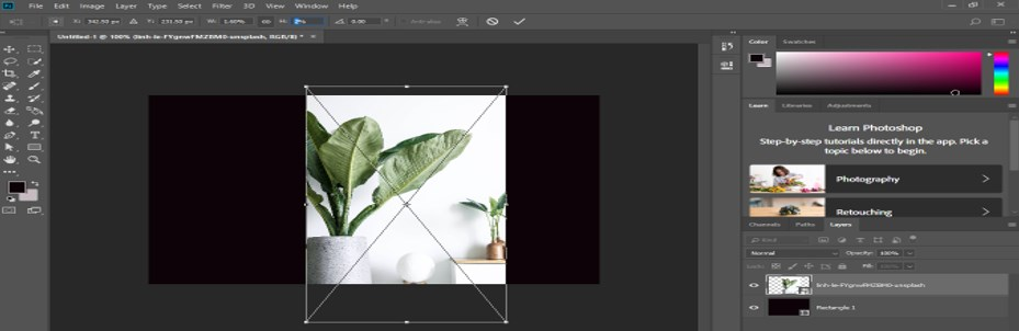 Transform Tool Photoshop - 10