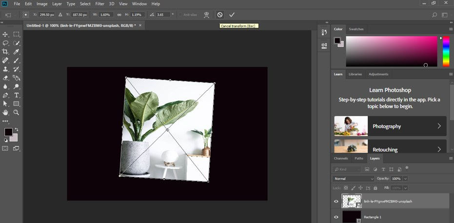 Transform Tool Photoshop - 13