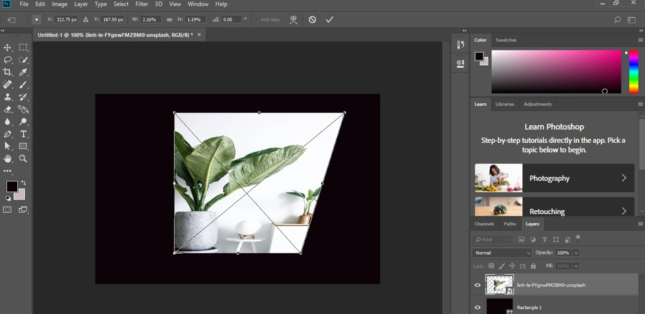 Transform Tool Photoshop - 16