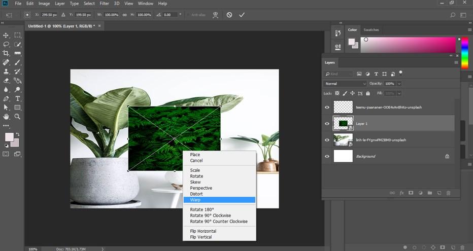 Warp Image Photoshop - 11