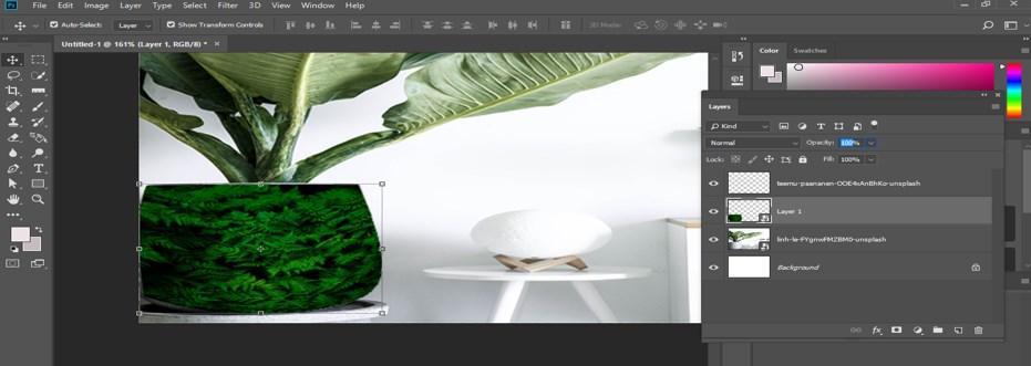 Warp Image Photoshop - 24