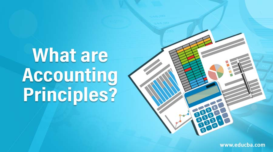 What are Accounting Principles?