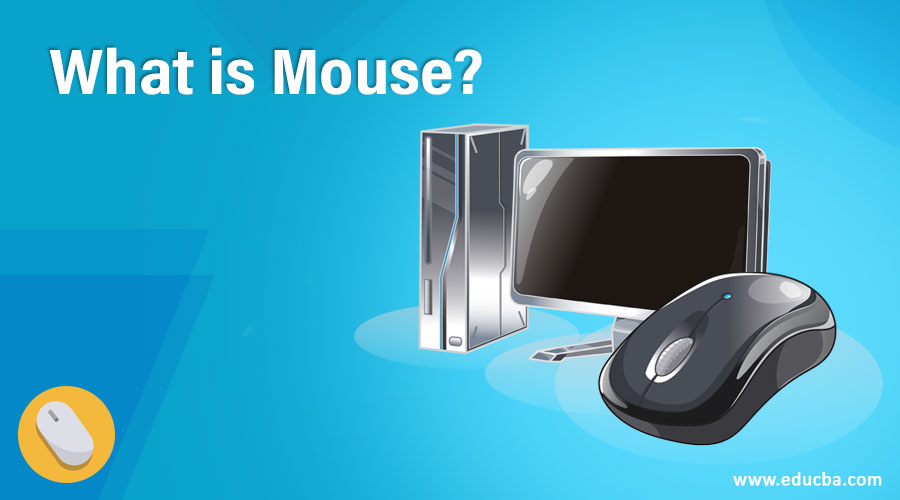 What is Mouse?