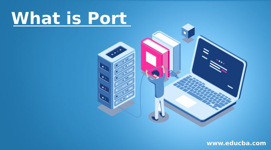 What is Port