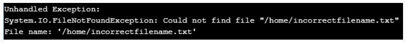 c# FileNotFoundException 2