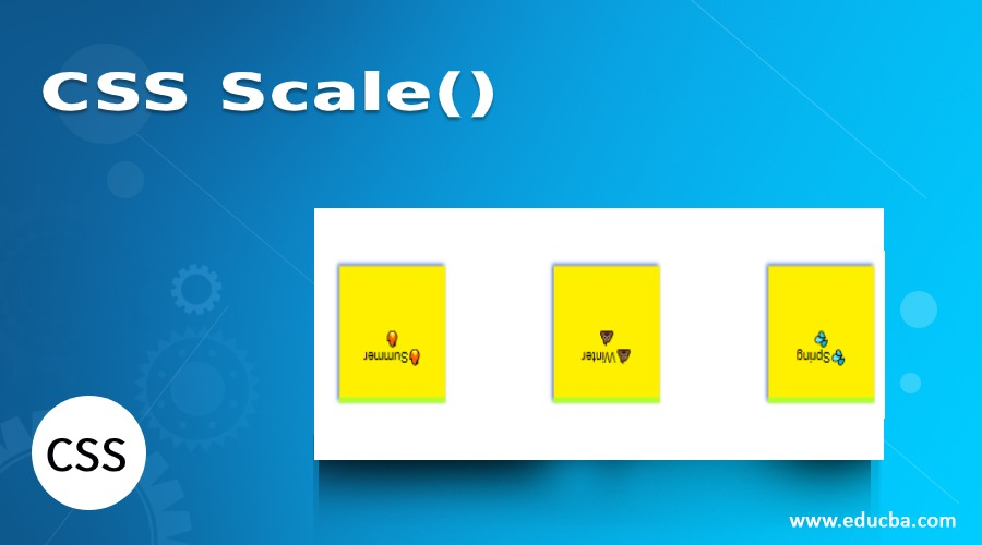 CSS Scale()