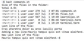 Bash File3