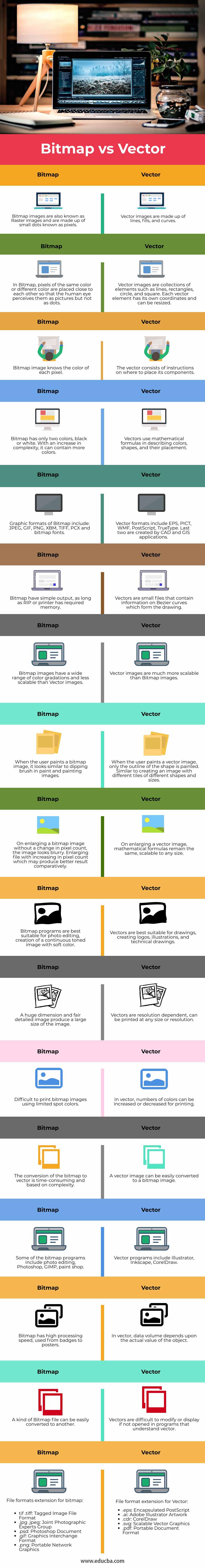Bitmap-vs-Vector-info