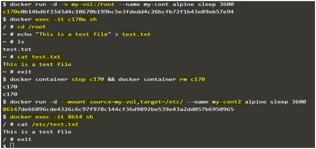 Docker Volume Example 5