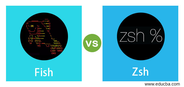 Fish vs Zsh